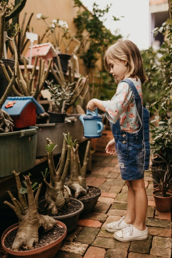 Talking and emotional development toys for preschoolers